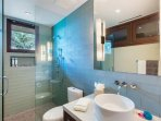 Guest/Media Room Bathroom