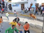 Running with the bulls in Gaucín on Easter Sunday