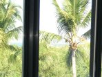 View from the bedroom of the Ocean similar to the Balcony eastwards