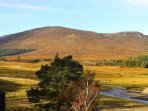 Shooting Lodge in Scotland overlooking River Spey, available for self catering holidays