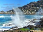 The famous blowhole just south of town   Photo:  Ken Gagne