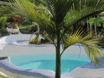 Original & tropical swimming-pool for a lot of fun at Les Cottages de Bellevue Ecolodge