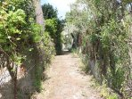 the natural path that takes you from the house to the almost private beach 100 m away!