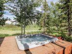 Discovery Chalet 378 - hot tub in backyard