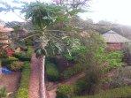 Ngorongoro Coffee Rest House