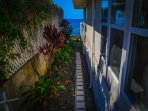 Path to Ocean