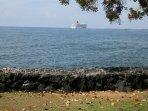 Cruise ships anchor weekly