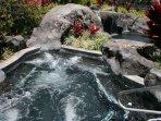 Palm Villas Hot Tub