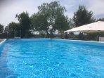 La grande piscina tra il verde