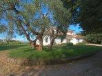 Villa Stauder - lawn - private parking