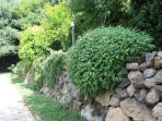 The herb garden by the holiday house, for your kitchen