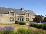 Solva spacious modern barn conversion on the Pembrokeshire Coast - pets welcome