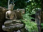 Our buddha statue in the garden