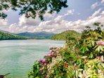 Enjoy a scenic walk through the Memory Garden