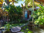 Villa: Walk from the side veranda, across the fish pond, into the garden.