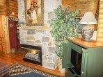 Den Fireplace & TV