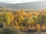 En pleno otoño