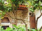 giardino di agrumi e orto del raccolto-cotto e mangiato. Erbe aromatiche per la brace.