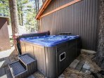 Outdoor Spa in Back Yard