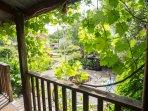 Looking across garden from veranda