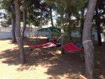 Pineta: zona relax