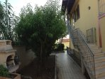 Scalinata d'ingresso indipendente con giardino privato e barbecue