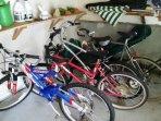 bikes provided