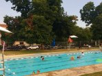 1.6 Miles From the House -- Shady Park, Play Area, Playscape, Tennis Courts and This Pool