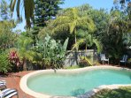 Apartment, close to Curl Curl beach & Manly