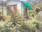 Bamboo Hut Side View