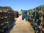 Watch the lobsterman work the docks.  Offer to buy the catch of the day.