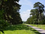 The historical Monnington Mile (no cars)  where you can walk, cycle, run &  watch beautiful birds.