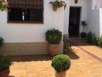 patio y plantas