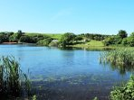 Kinghorn Loch, a beautiful tranquil place to discover wild life, and an 'Earthship'
