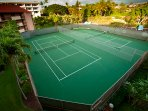 Tennis Court,Building,High Rise,Fir,Tree