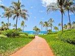 Walkway Between Lagoons