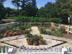 The resort features its own herb garden!