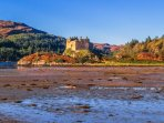 Beautiful Castle Tioram - a short drive away