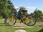 Biciclette Affitto