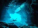 Fondos marinos con bosques de poseidonia y abundantes cuevas