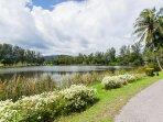 Beatiful laguna area