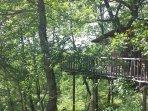 Une cabane nichée dans les arbres
