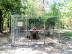 10x10x6 dog pen near back entrance