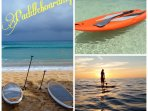 Paddle boarding offer a fun, relaxing way to play on the water.