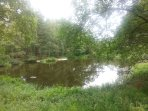 Nice picnic, walking and jogging area