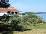 Haus ist von Olivenhainen und Kieferwald umgeben