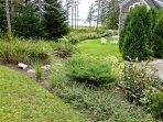 Cove House side garden