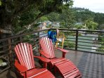 adirondack chairs on the tree deck