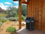 Coyote Run 9 - Patio with gas BBQ and views