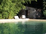 La piscine, à l'ombre des bambous